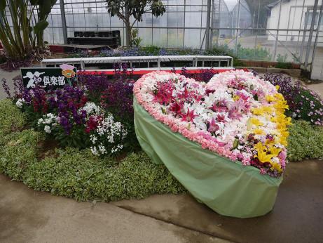 20140322_flower2