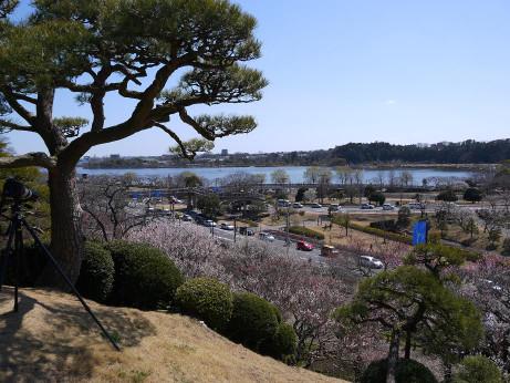 20140328_nagame