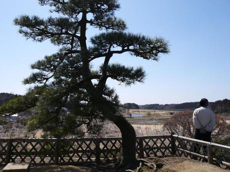 20140328_senekidai