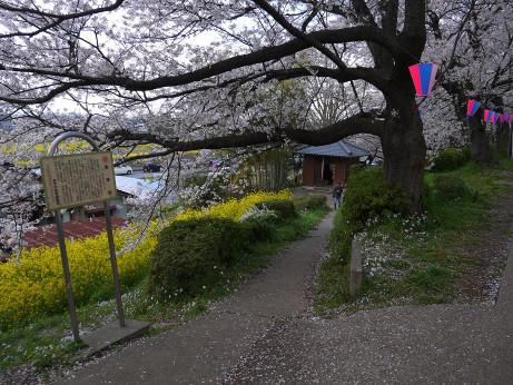 20140408_seihodou
