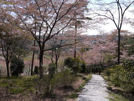 20140425_miharasi