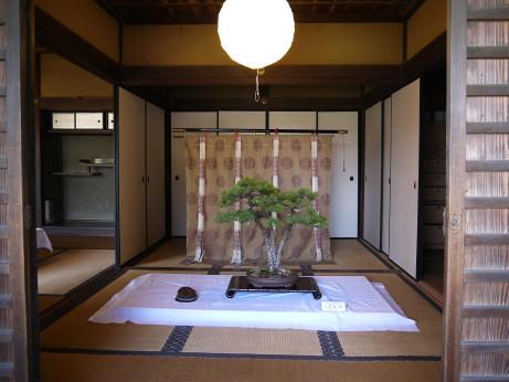 20140426_bonsai