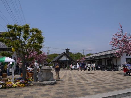 20140508_kaeru