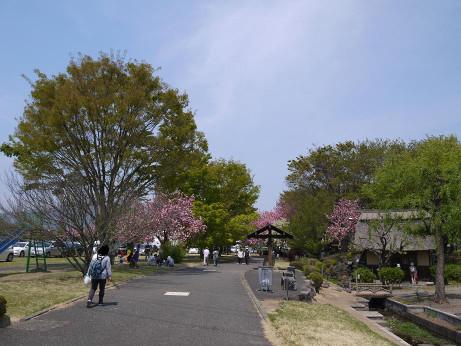 20140510_fureai_park1