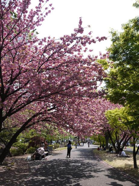 20140510_fureai_park5