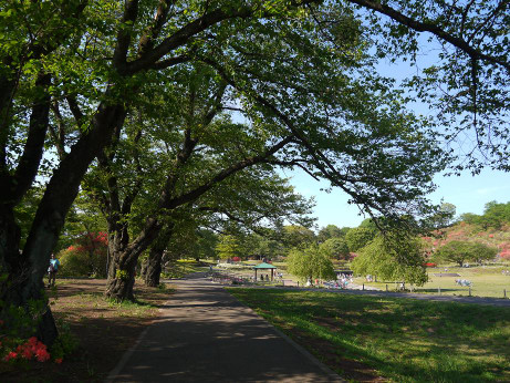 20140517_road1