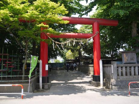 20140529_syouwa_torii