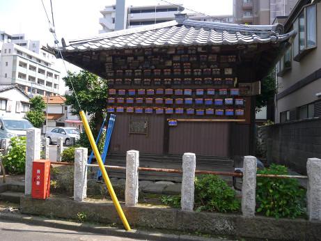 20140605_torayakusi2
