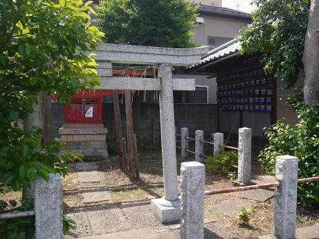 20140605_torayakusi4