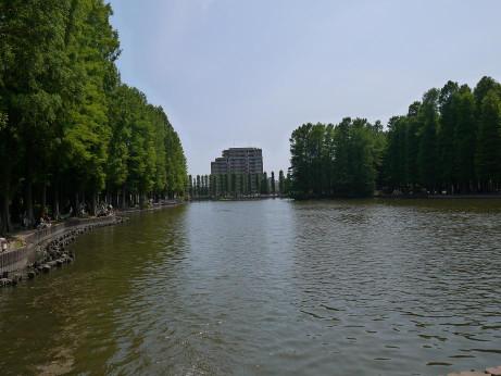 20140606_bessyonuma_park02