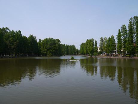 20140606_bessyonuma_park10
