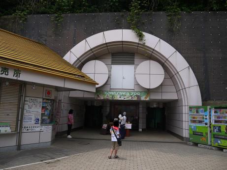 20140611_syoumenguti