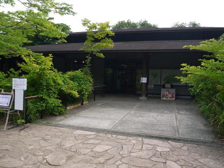 20140615_sizenkansatunomori