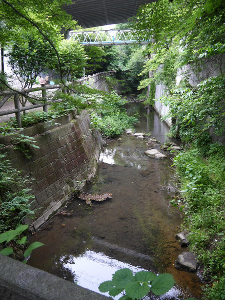 20140619_itati_river2