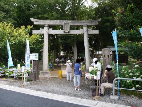 20140626_hikawa_jinjya_torii