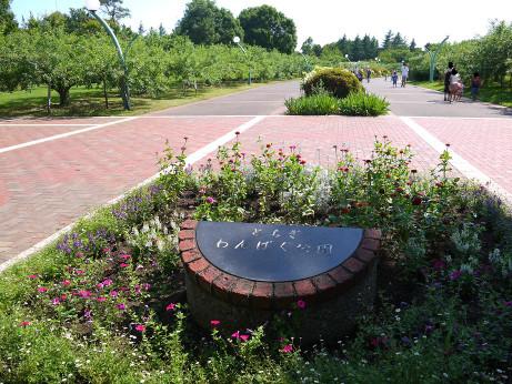 20140702_wanpaku_park01