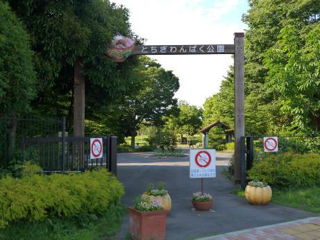 20140704_gate