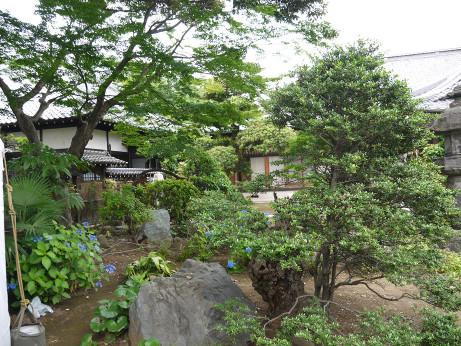 20140716_niwa