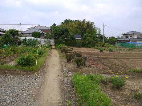 20140719_road06