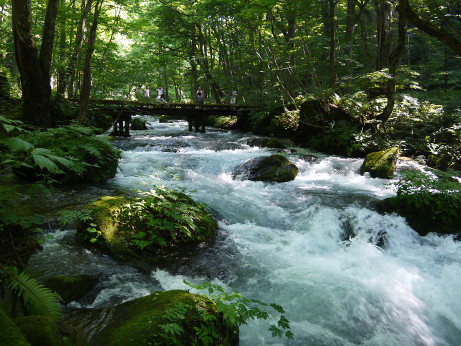 20140806_river1