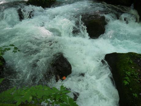 20140806_river2