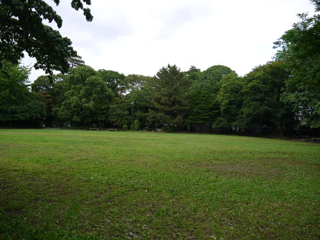 20140809_midorinomori_park