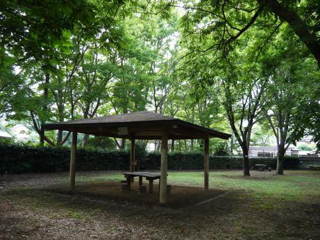 20140809_park