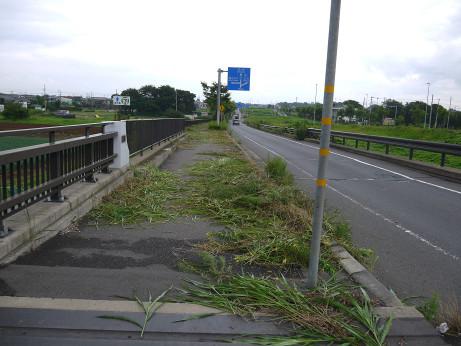 20140812_taiseibasi