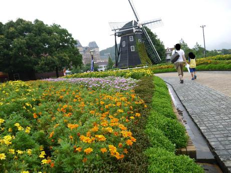 20140830_flower_road_04