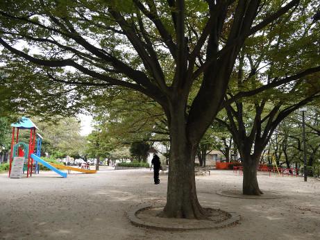 20141017_hitotugi_park_4