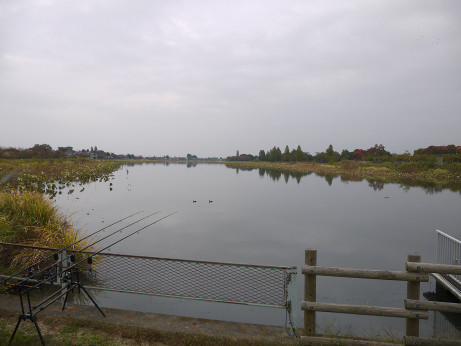 20141103_jyounuma