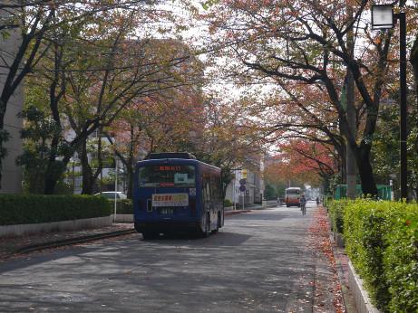 20141104_bus_3