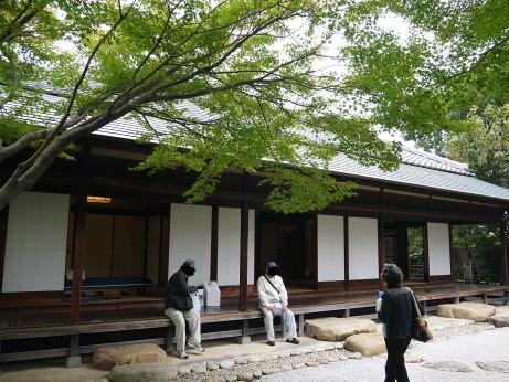 20141106_niwa_1