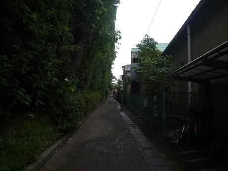 20141111_road_04