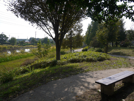 20141112_nakainuma_park_08