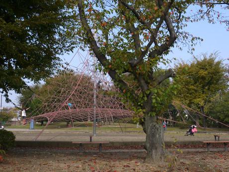 20141125_numabe_park