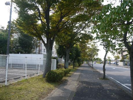 20141125_road_12