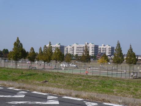 20141125_undou_park