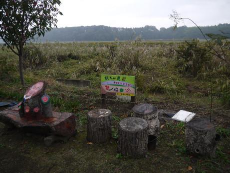 20141126_nakane_st_8