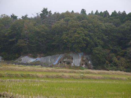 20141128_yokoana_01