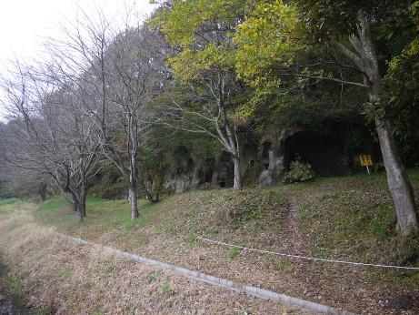20141128_yokoana_03