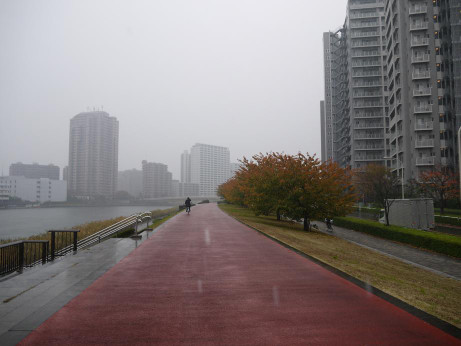 20141209_road_01