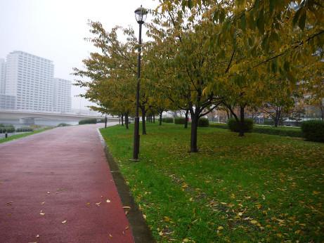 20141209_road_03