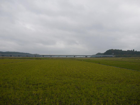 20141211_tanbo_1