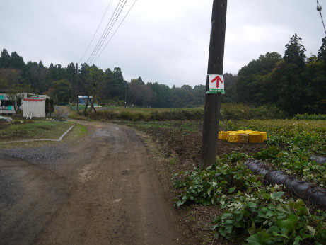 20141212_road_02