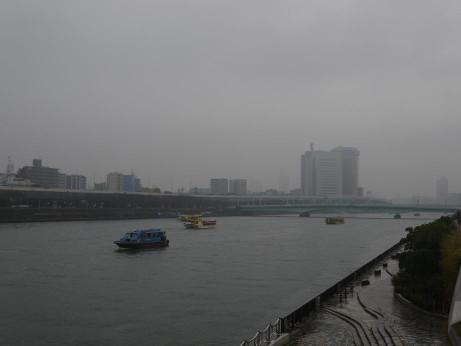20141212_sakura_bashi_5