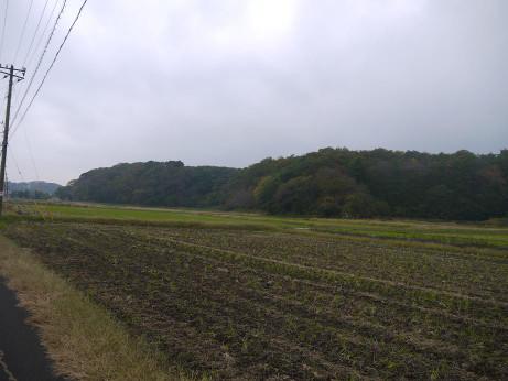 20141214_road_03