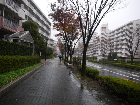 20141220_road_03