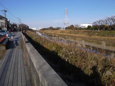 20150110_kasiogawa_02