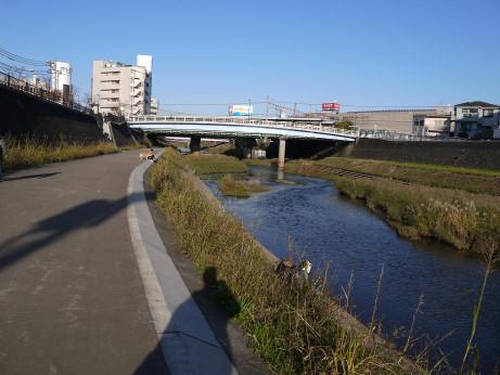 20150110_kasiogawa_06
